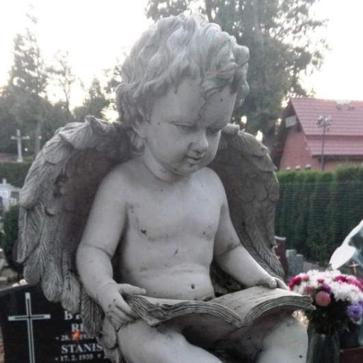 Rzymskokatolicki cmentarz przy ul. Wzgórze Wolności w Kartuzach