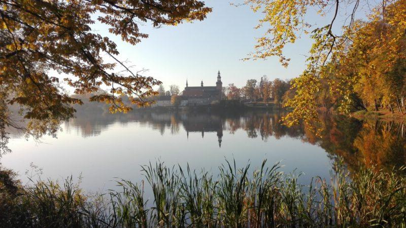 Kartuzy - spacer z widokiem na Kolegiatę - Gaj Świętopełka, Aleja filozofów i Wyspa Łabędzia.